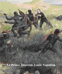 La Route du Prince Impérial, Louis Napoléon, Commemorations in South Africa