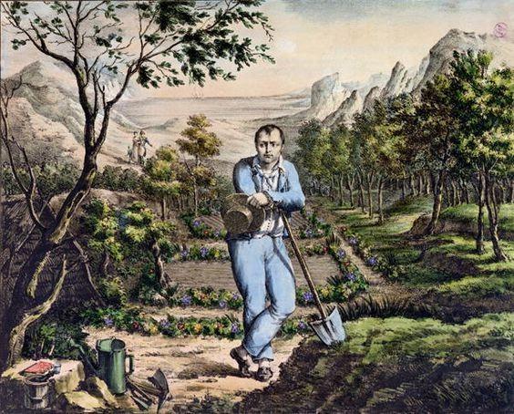 Napoleon Gardener St Helena