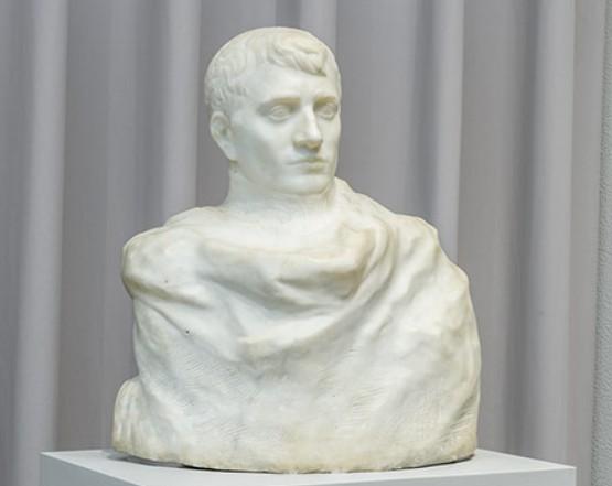 Napoleon wrapped in his dream