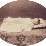 The Prince Imperial, summer 1856, photographed by Gustave Le Gray
