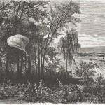 La poste aérienne à Metz pendant la guerre de 1870